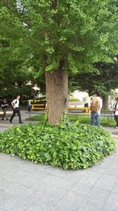 慶応大学では友人が決起!